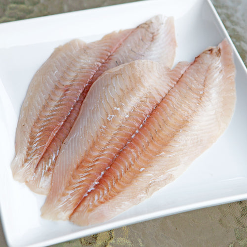 Fresh Fluke Fillets - 1 lb.