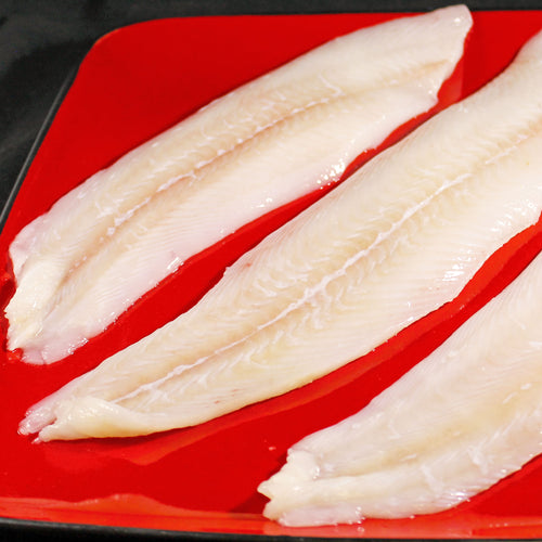 Fresh Grey Sole Fillet - 1 lb.