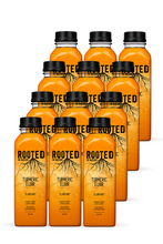 Load image into Gallery viewer, Rooted Turmeric Elixir (12 pack)