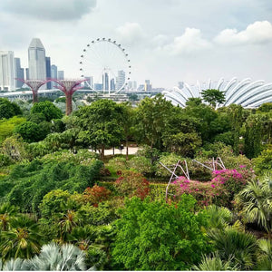 Singapore highlights