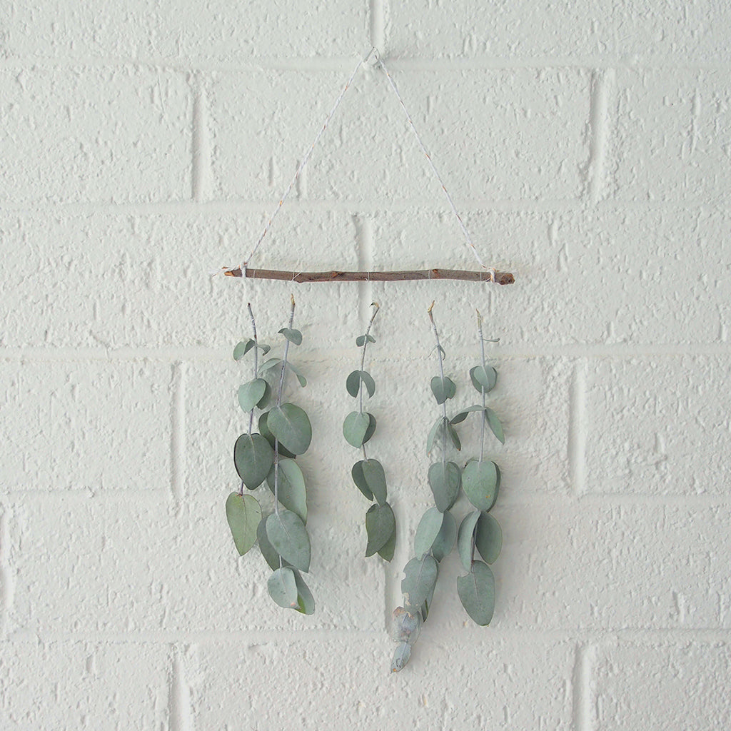 Create a eucalyptus wall hanging