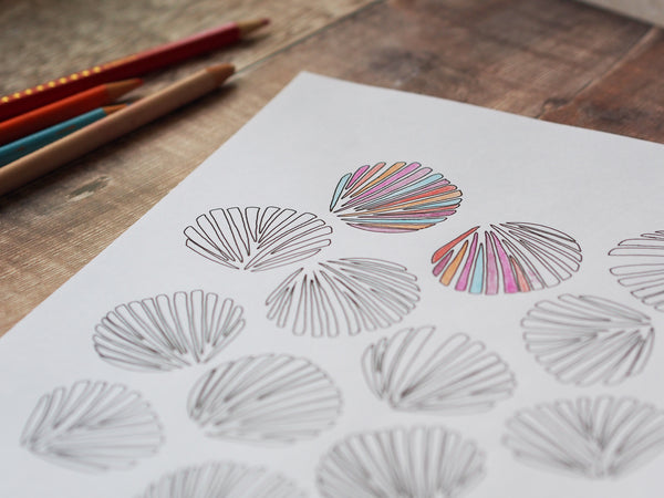 Colouring in sheet - shells