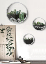 Load image into Gallery viewer, Nova - Modern Nordic Wall Vase - 3 Set