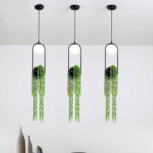 Indoor Planter Light are hanging in the image.