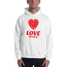 Load image into Gallery viewer, Love Wins  Unisex Heavy Blend Hooded Sweatshirt