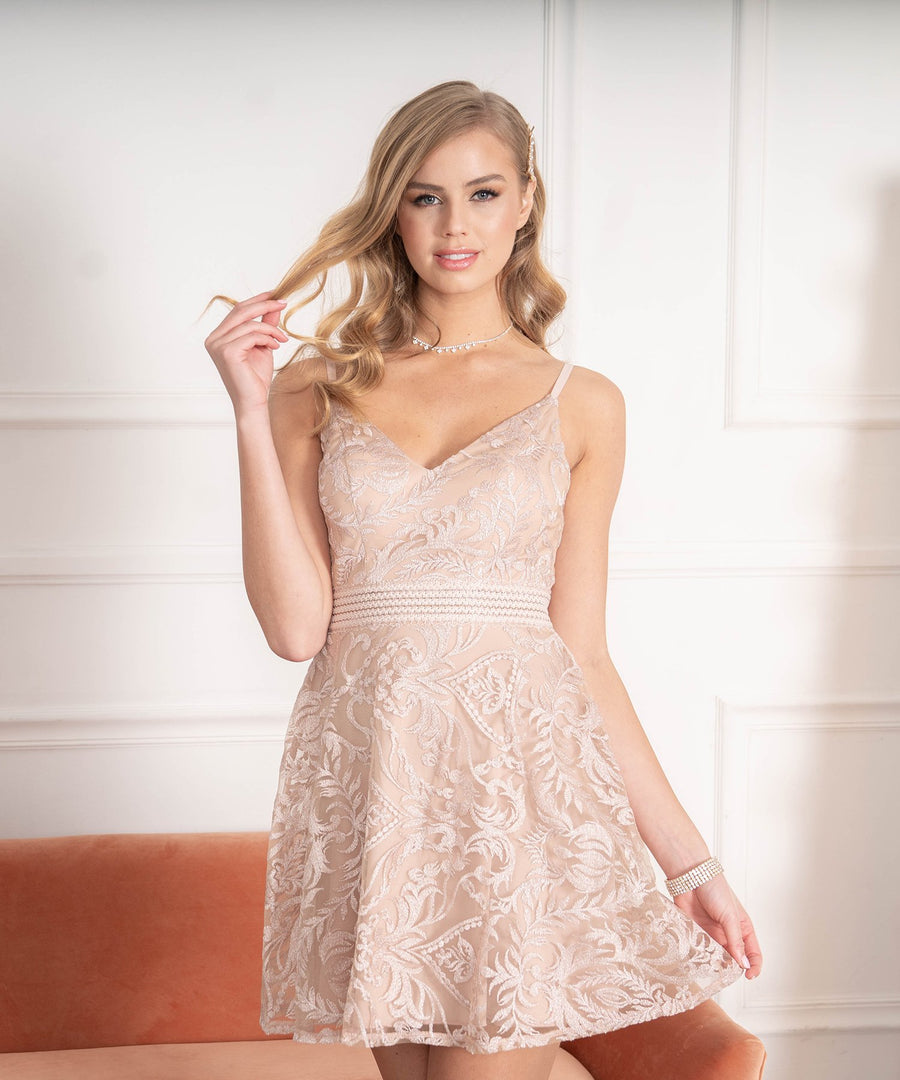 Ella Embroidered Illusion Waist Skater Dress-Dressy Dresses-Nude/Blush-Speechless.com