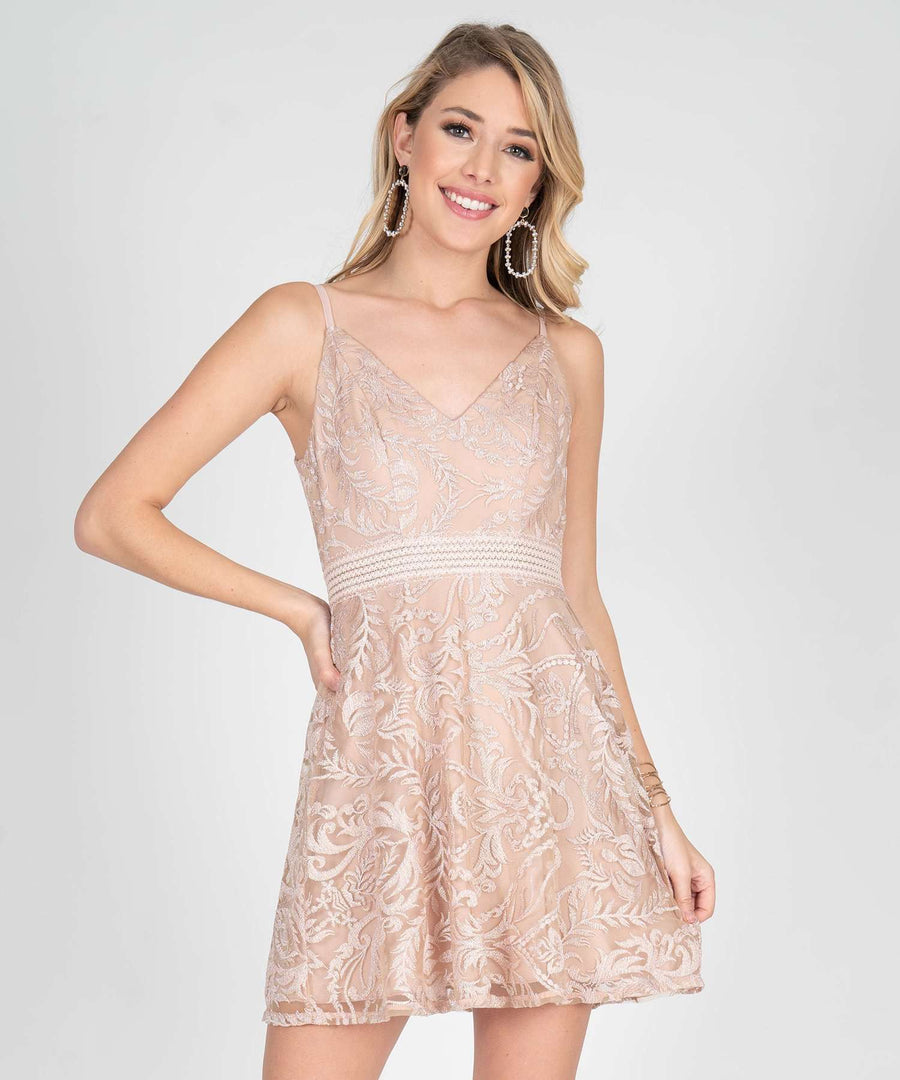 Ella Embroidered Illusion Waist Skater Dress-Dressy Dresses-0-Nude/Blush-Speechless.com