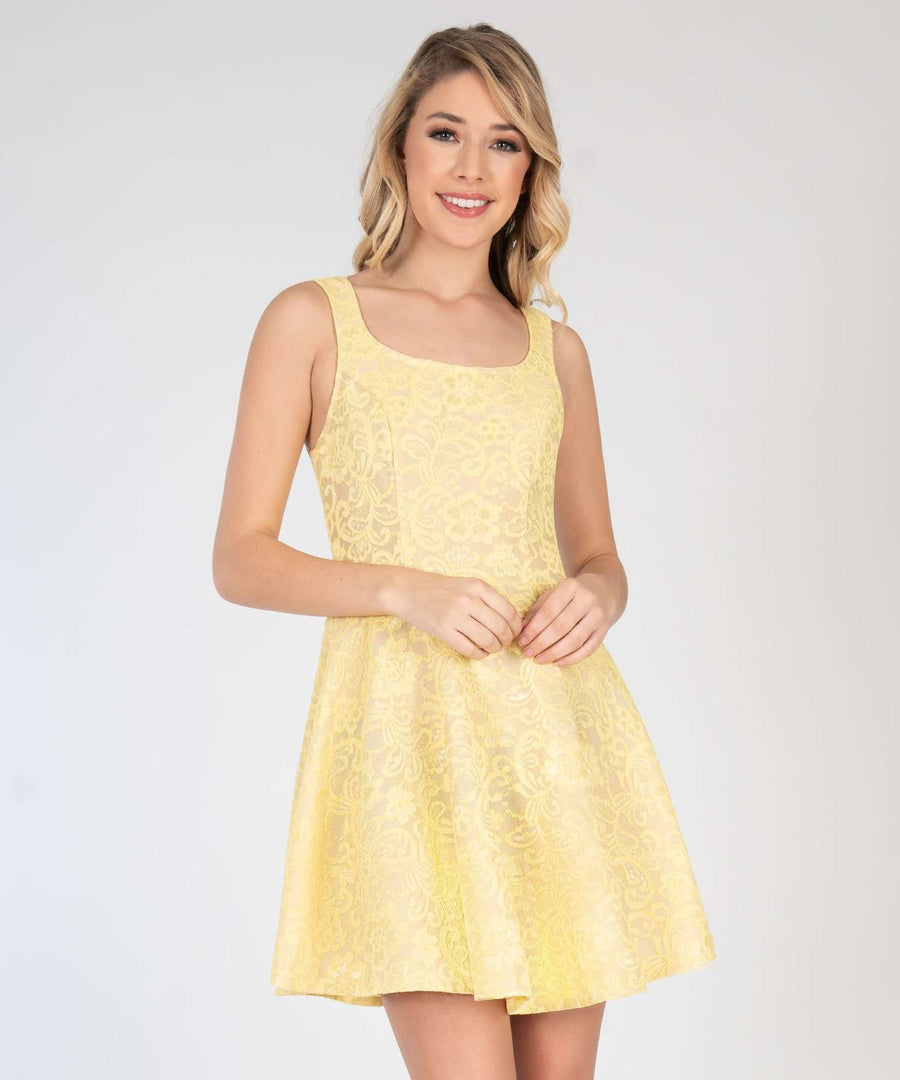Darcy Lace Skater Dress-New-0-Nude/Yellow-Speechless.com