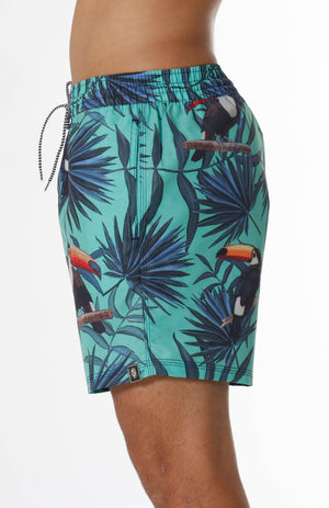 Volley Toucan Shorts