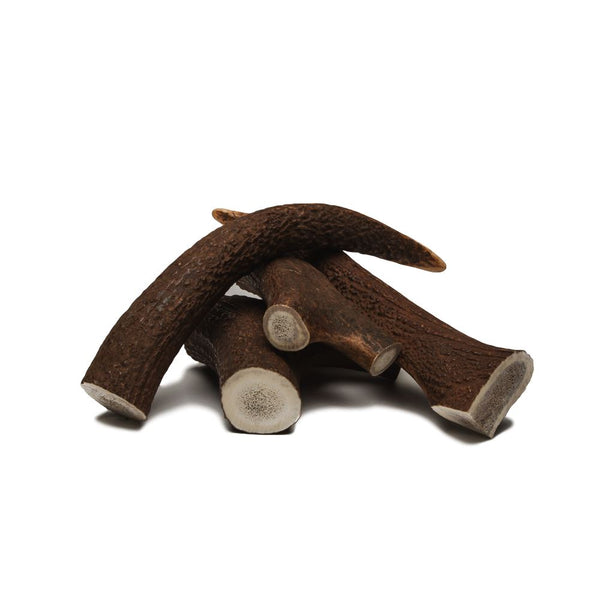 Antler Chew Toy Cloud7