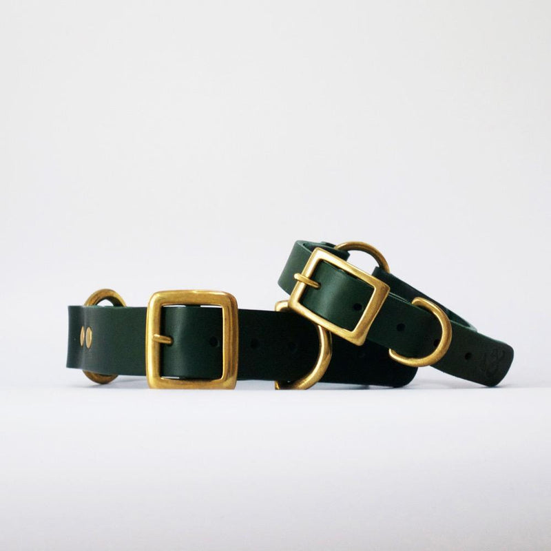 Classic Leather Collar Fetch & Follow Green S