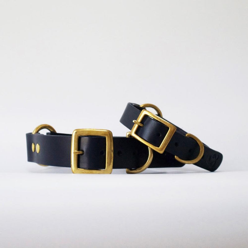 Classic Leather Collar Fetch & Follow Navy S