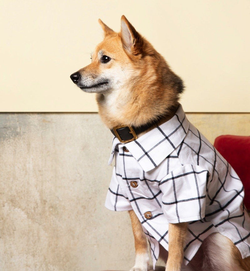 Commuter Flannel Shirt Dog Threads