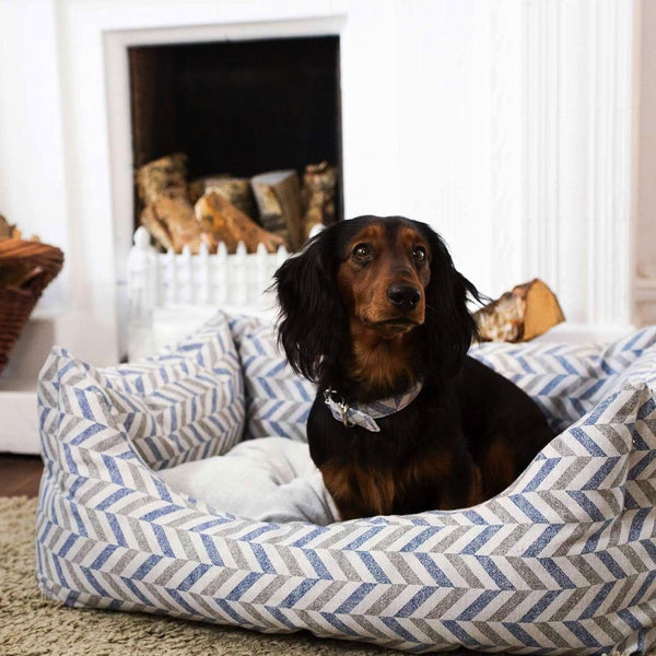 Copy of Eco Friendly Dog Bed Project Blu