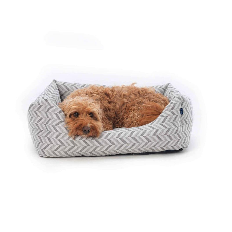 Eco Friendly Dog Bed Project Blu