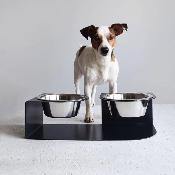 Long Ears Bowl Hello Pets S Black