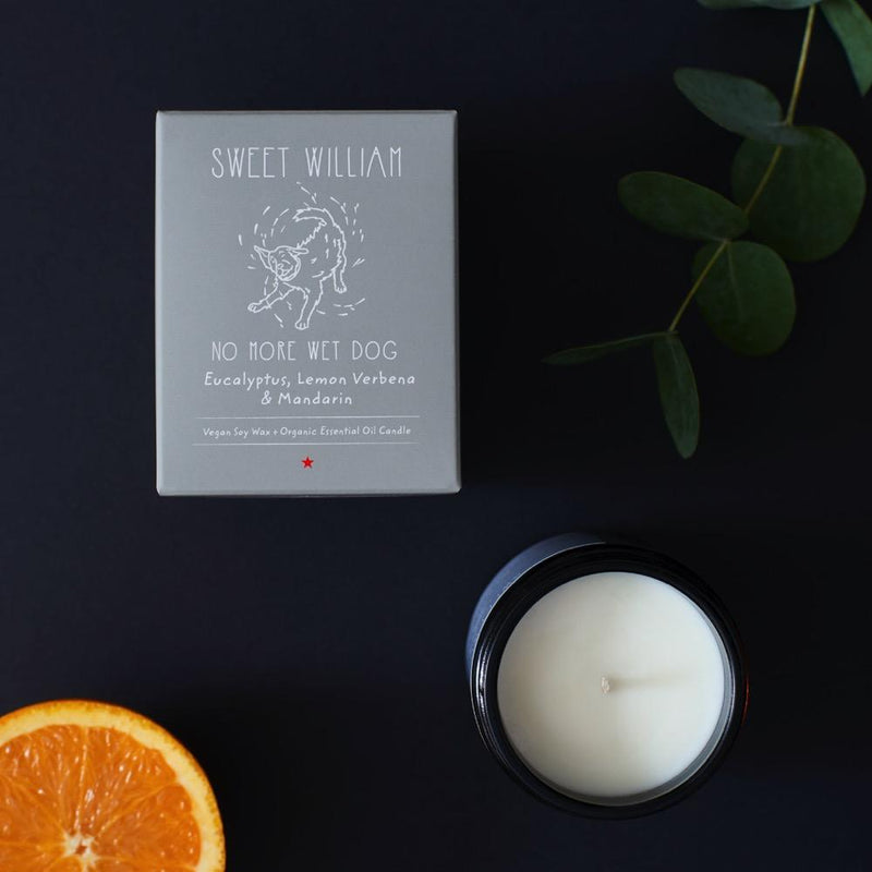 No More Wet Dog Candle Sweet William