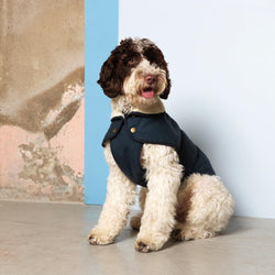 Raincoat - Navy Fetch & Follow