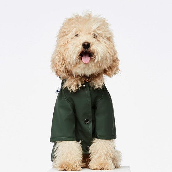Raincoat Sarah The Painter's Wife 10 (e.g. Toy Poodle) Green