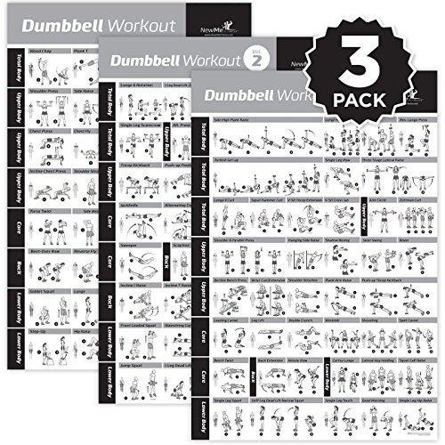 NewMe Fitness Dumbbell Exercise Posters Laminated 3 Pack Includes
