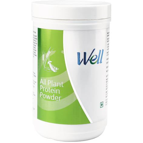 WELL ALL PLANT PROTEIN POWDER (200 G) - Worldshopon.com