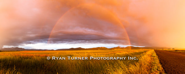 Gallatin Valley Rainbow