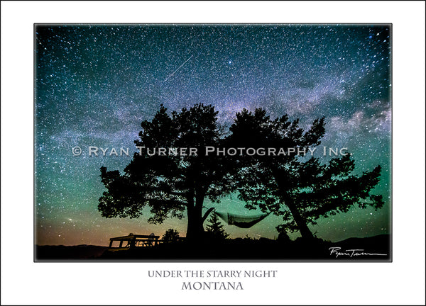 Under the Starry Night - Notecard