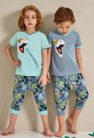 Dino Boys Forest Jammies 4PC Set