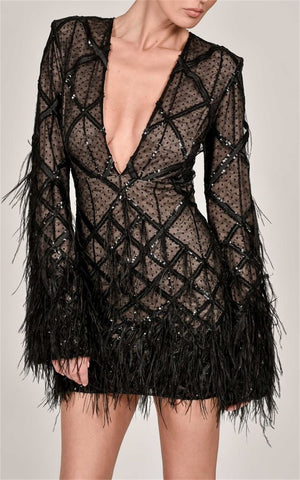 Stunning Feather Trimmed Sequined Mini Dress