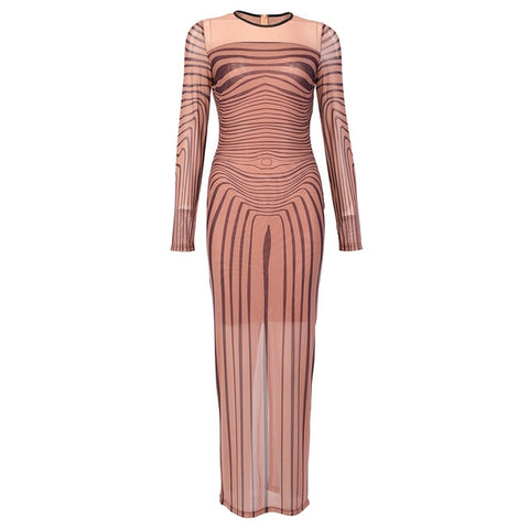 We Got This - Exquisite Sheer Mesh Maxi Bodycon dress