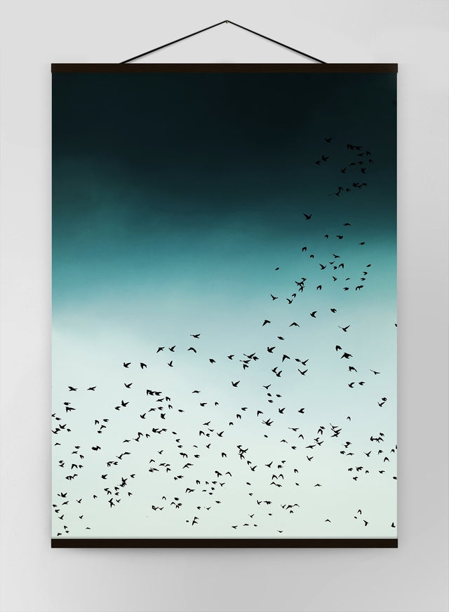 Birds In Flight Canvas