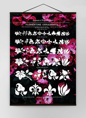 Typographic Ornaments Floral Canvas