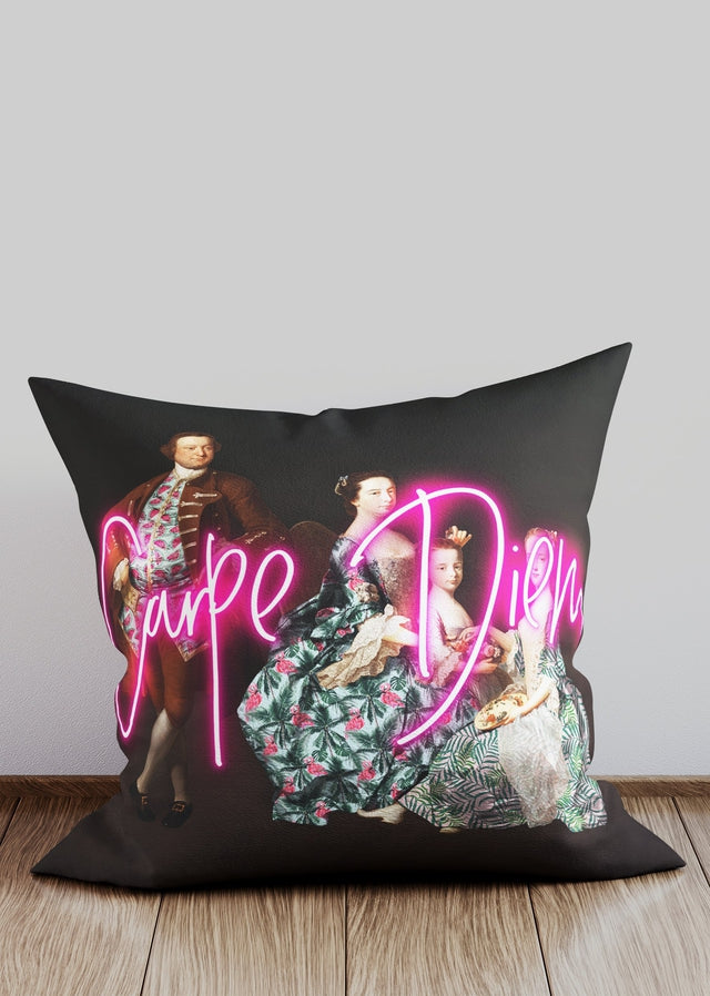 Carpe Diem Altered Art Cushion