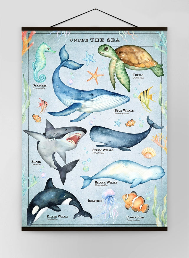 Vintage Style Sea Creatures Chart Educational Canvas