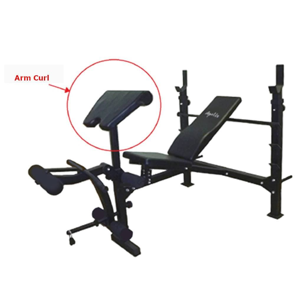 Apollo Athletics Olympic Bench with Arm Curl Pad bench Apollo Athletics