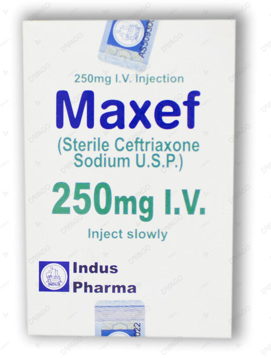 Maxef Injection Iv 250mg 1 Vial