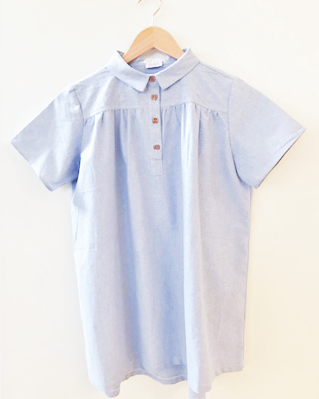 MINI MERE Birdie Blue Oxford Dress