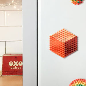 Coral Cube Magnet