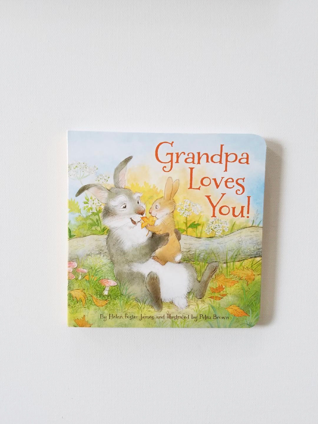 Grandpa Loves You Board Book