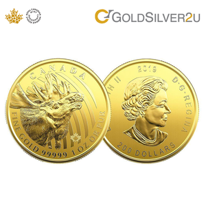 "[ONLINE EXCLUSIVE PRE ORDER] Tomei x Royal Canadian Mint Yellow Gold 99999 (24K) ""2019 Call Of The Wild - Moose"" 1 Oz. (WM-1Z-19)"