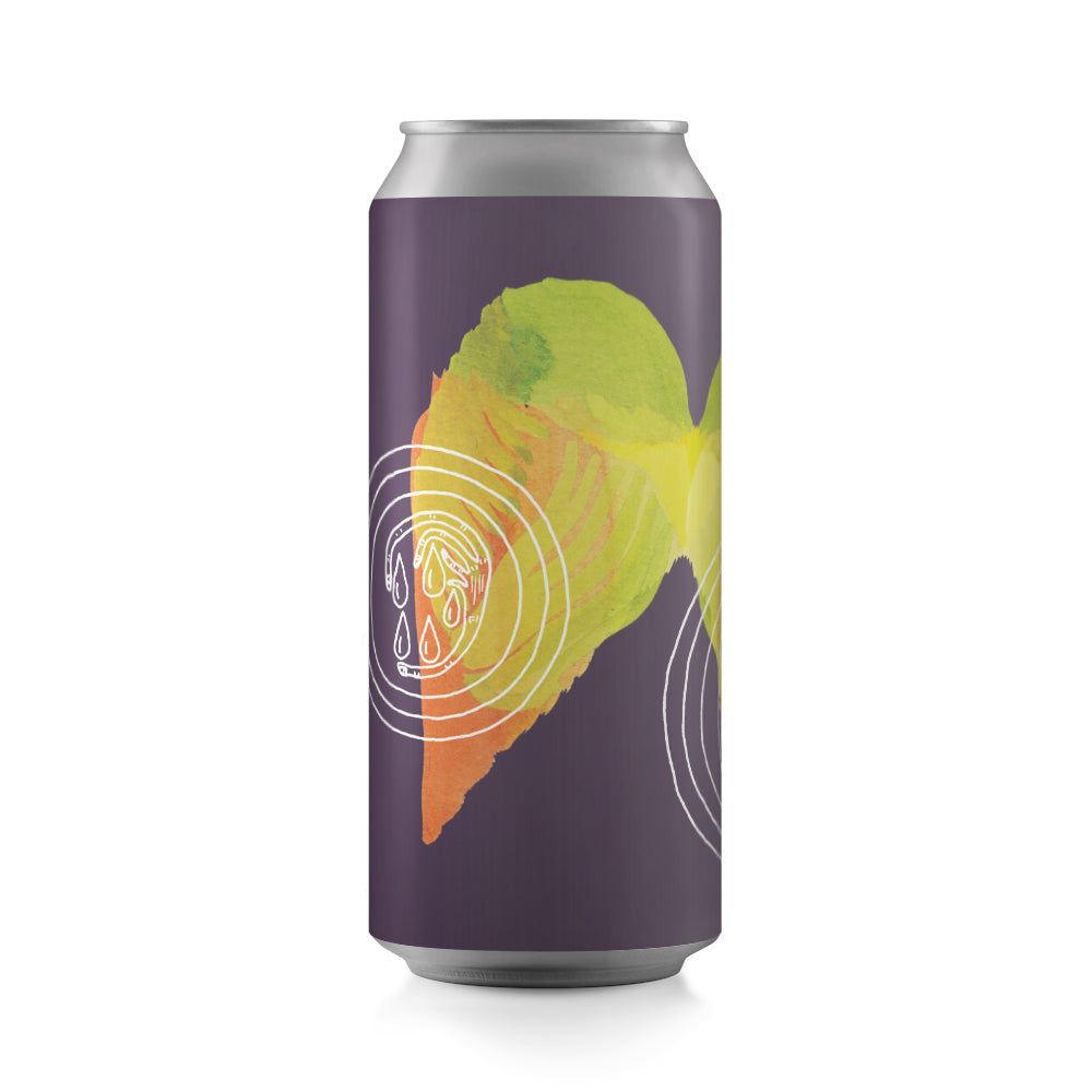 DDH The Light That Spills Out Of The Hole In Your Head 4-pack