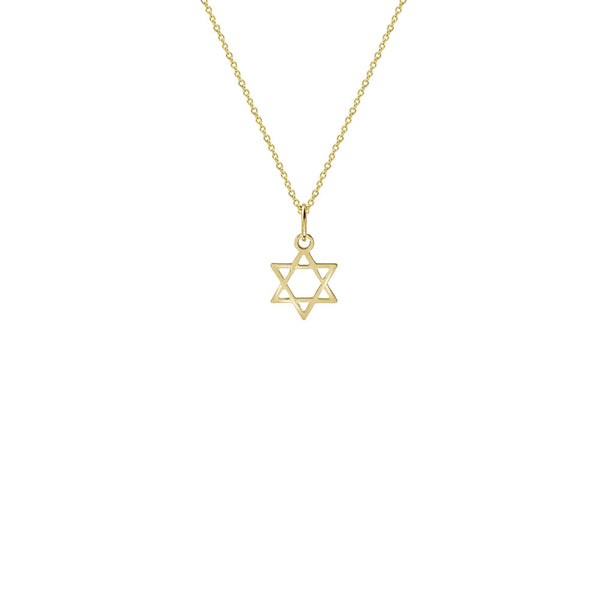 THE STAR OF DAVID MEDAL NECKLACE