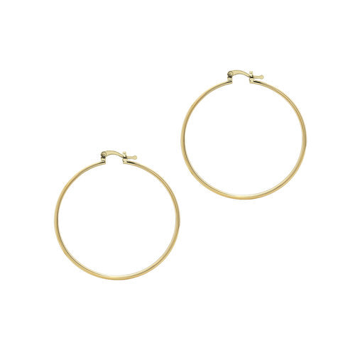 THE M ESSENTIAL HOOPS