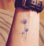 Watercolor Dandelion Temporary Tattoo