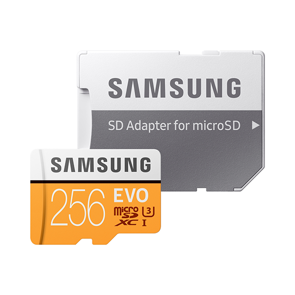 Samsung 256GB Evo microSDXC Class 10 Flash Memory Card with Adapter