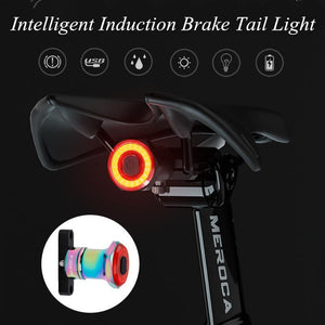 Intelligent Induction Brake Tail Light