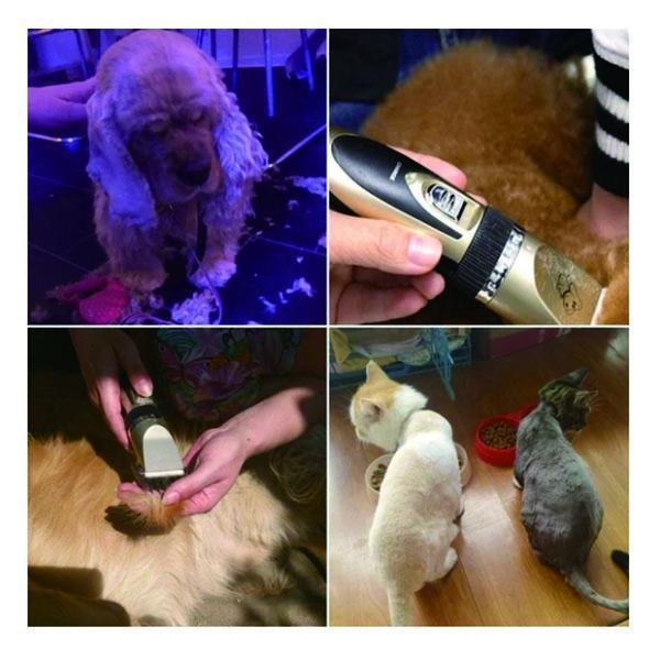 Cordless Dog Shaver Clippers