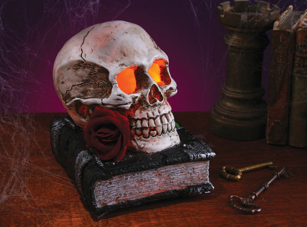 Light Up Skull On Book