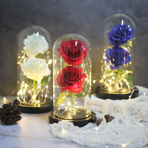 Beauty And The Beast Desk Rose Light Battery Powered Led Lamp