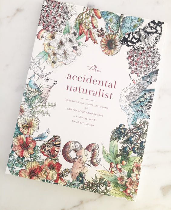 The Accidental Naturalist:  Exploring San Francisco and Beyond